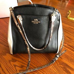 EUC Coach purse